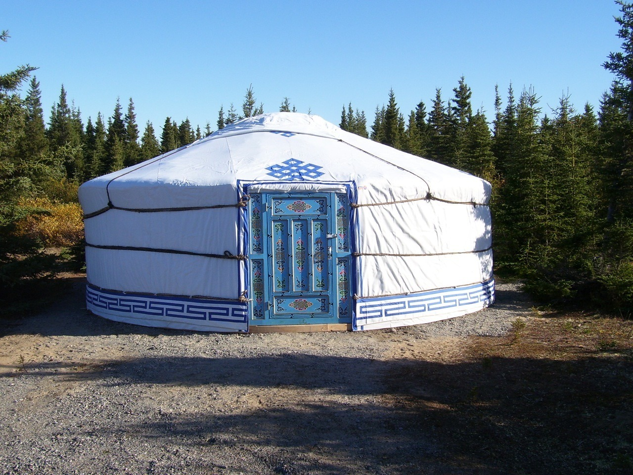 large yurt in the woods