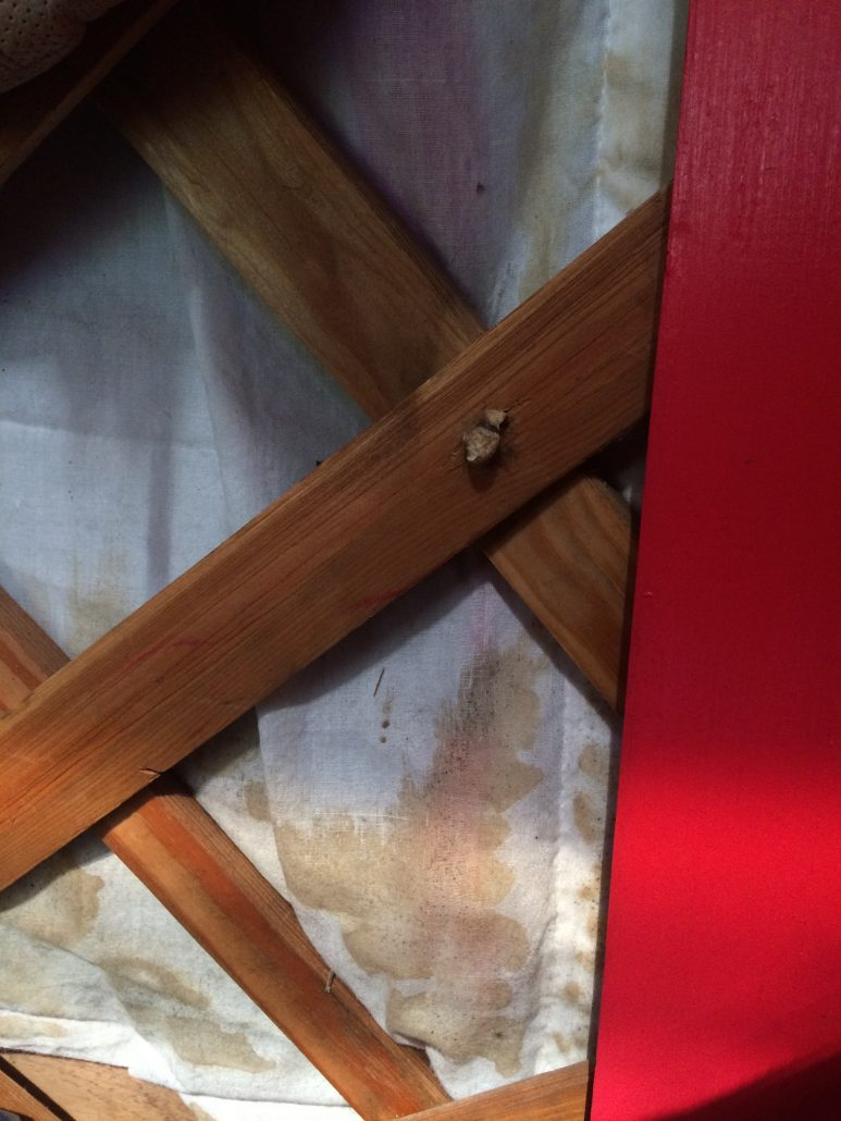 inside layer of a yurt